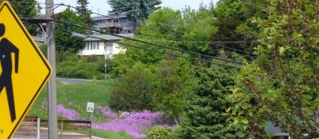 grand-avenue-overview-20130601-39-636