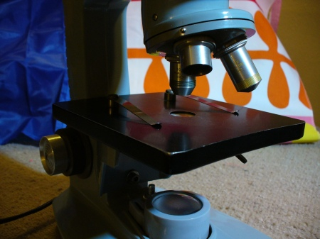microscope business end
