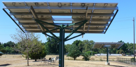 solar panel trees