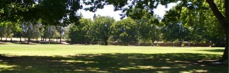 Hall Park sports field