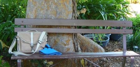 bench in mini-park