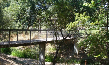 foot bridge across the creek