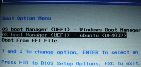UEFI boot options
