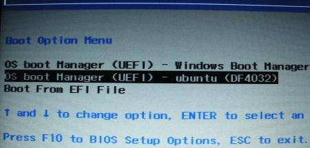 UEFI boot options