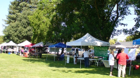 community-fair-Howe-park-booths-20180704-57.jpg