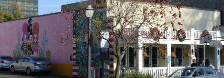 20181213-134-walk-through-sacramento-cute-place.jpg