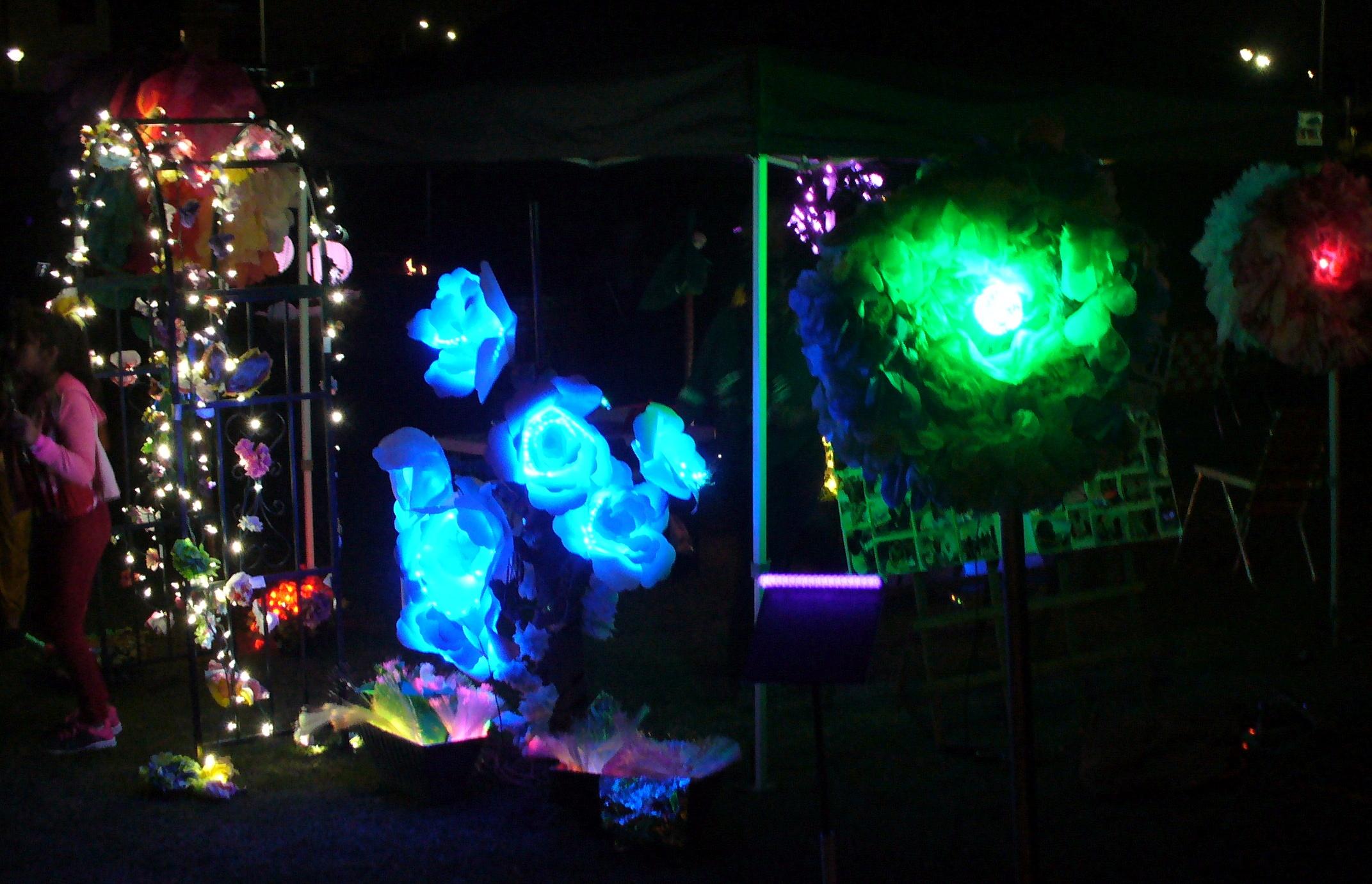 5000_watts-event-20191005-79-flowers
