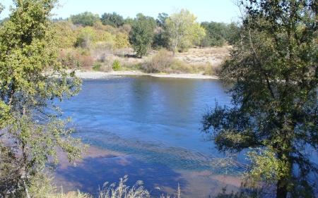 river-scene-20191102-47